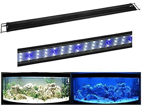R de 75 LED Lámpara de Acuario para 75 - 90 cm iluminación Acuarios aufsetzl euchte lámpara flexo con pinza (Luna Luz Azul/Blanco: Amazon.es: Productos para ...