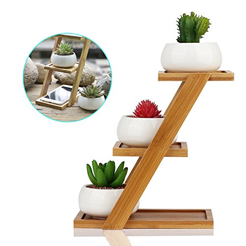 Succulent Planter,Longess White Small Round Ceramic Pots With 3-Tiers Bamboo Shelf for living room,dining room,garden,bedroom,hallway,window sill