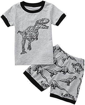 c2fc8ab38 feiXIANG Conjunto de Ropa para niños pequeños Ropa de bebé Bebé recién  Nacido Niño de Dibujos Animados Camiseta de Dinosaurio Tops + Shorts  Conjunto de Ropa