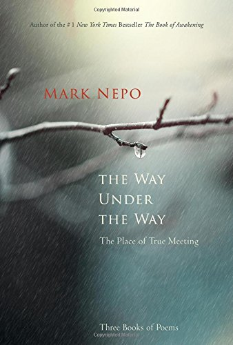The Way Under the Way: The Place of True Meeting (Awakening Your Soul To The Presence Of God)