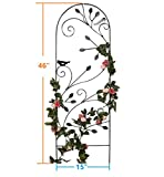 "Amagabeli 46"" x 15"" Rustproof Black Iron Garden Trellis Bird & Leaf Decor for Climbing Plants Potted Vines Vegetable Vining Flower Patio Metal Wire Lattices Grid Panels for Ivy Roses Cucumber Clematis"