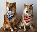 Kawaii Shiba Co. Karakusa Japanese Shiba Inu Dog