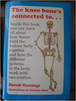 understanding how the human body works The human body is the entire structure of a human beingit is composed of many different types of cells that together create tissues and subsequently organ systemsthey ensure homeostasis and the viability of the human body.