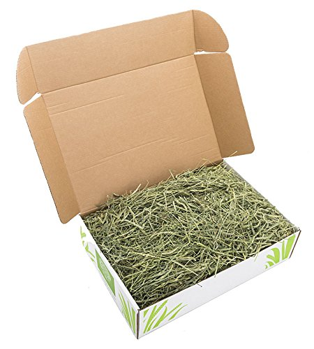 Small Pet Select 2nd Cutting Timothy Hay Pet Food, 8-Pound by Small Pet Select (Image #1)