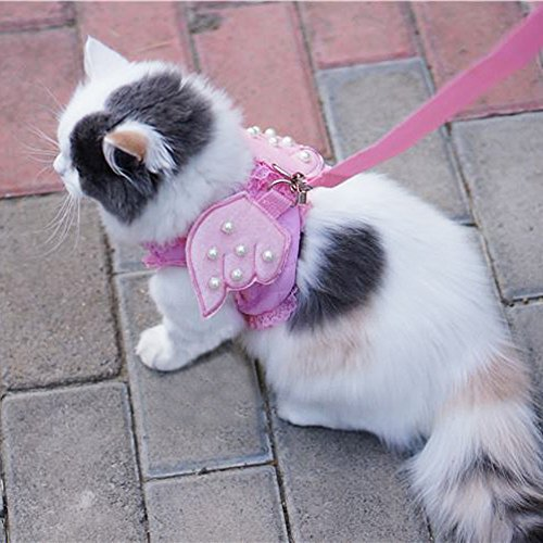 Angels Mesh Costumes (Ruri's Cat Kitty Puppy Dog Walking Vest Harness Matching Lead Leash Angel Wings Costume With Lace Artificial Pearl Design (Extra Small, Pink))