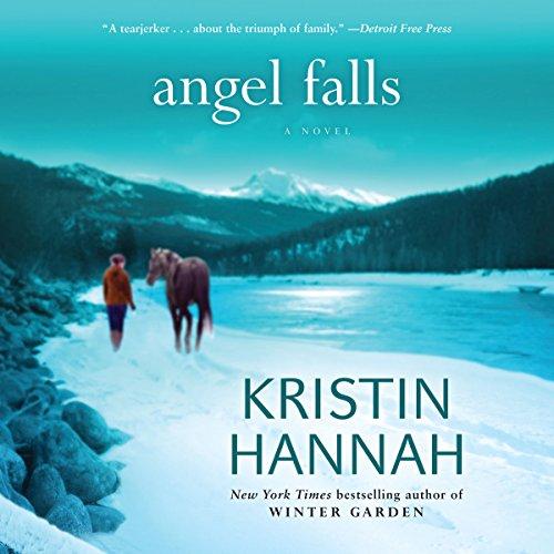 Angel Falls by Brilliance Audio