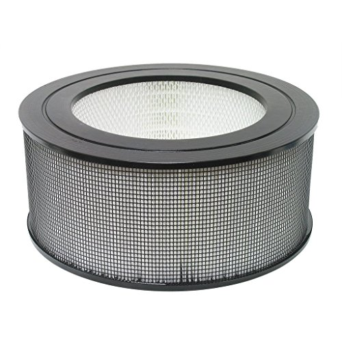 Nispira Replacement True HEPA Air Filter Compatible Honeywell 21600/21500, 1 -