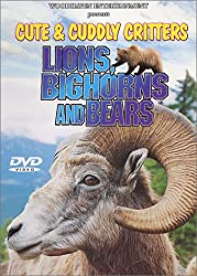 Cute & Cuddly Critters: Lions, Bighorns & Bears