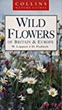 Wild Flowers of Britain and Europe, D. Podlech and Wolfgang Lippert, 0002199963