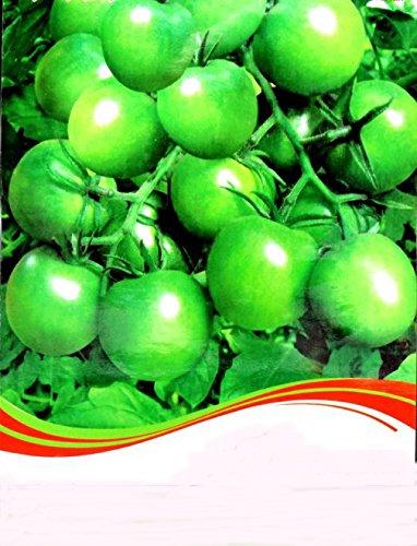 Amazon.com : Rare Heirloom \'Da Tong\' Green Pearl Cherry Tomato ...