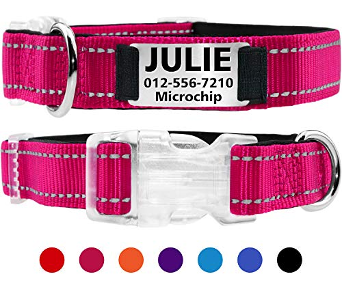 (Taglory Personalized Dog Collar with Name Plate/Custom Engraved Pet ID Tags No Noise/Reflective Collars Training for Small Medium Large Dogs/Hotpink)