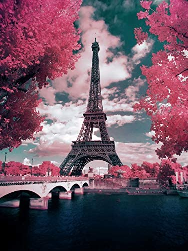 """Pink Paris 5D Diamond Painting Kit for Adults and Beginners, Paint with Round Diamond Beads Eiffel Tower Full Drill Canvas(12""""×16"""") Supply, DIY Diamond Art Picture Handicraft for Wall Decoration"""