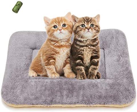 Cama para dormir ultra suave para mascotas para perro y gato 2
