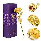 LOVEINUSA Golden Rose,24k Gold Rose Flower with