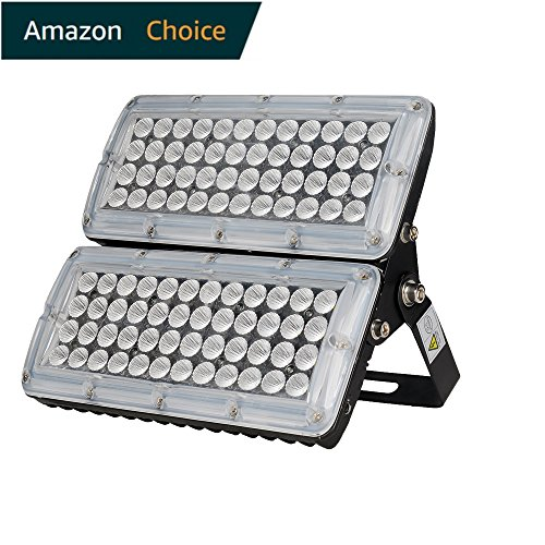 2 Bulb Flood Light Fixture