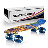 Newdora 22'' Complete Skateboard Cruiser with Colorful LED Light Up Wheels for Kids, Boys, Girls, Youths, Beginners (Sun, 22)