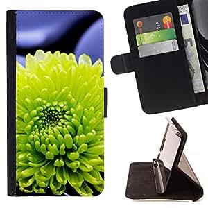 Momo Phone Case / Flip Funda de Cuero Case Cover - Planta Naturaleza Forrest Flor 19 - Apple Iphone 6 PLUS 5.5