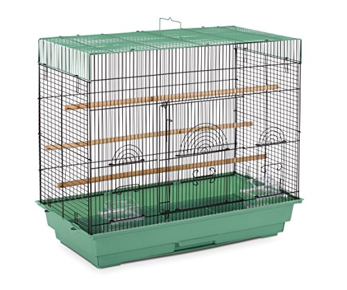 - Prevue Pet Products SP1804-4 Flight Cage, Green/Black