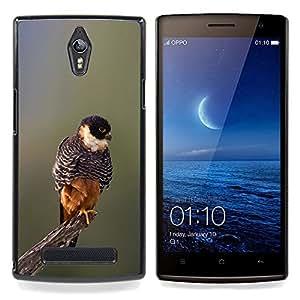 Eason Shop / Premium SLIM PC / Aliminium Casa Carcasa Funda Case Bandera Cover - Primavera Naturaleza borrosa Branch - For OPPO Find 7 X9077 X9007