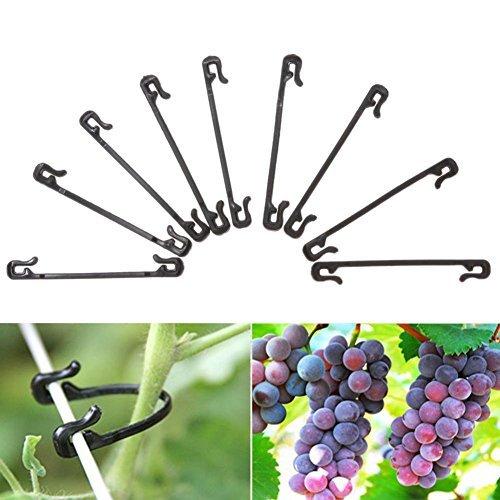 Whitelotous 6cm Durable Plastic Grafting Clips Fastener Plant Vines Vegetable Tendril Farming Clip (200 pcs)