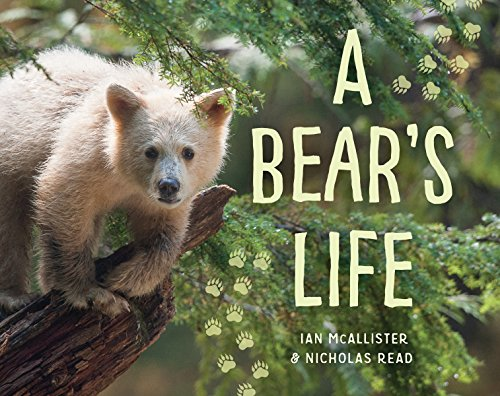 (A Bear's Life (My Great Bear Rainforest))