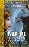 Wildhexe - Das Labyrinth der Vergangenheit (Reihe Hanser)