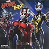 Ant-man and the Wasp - 2019 Calendar