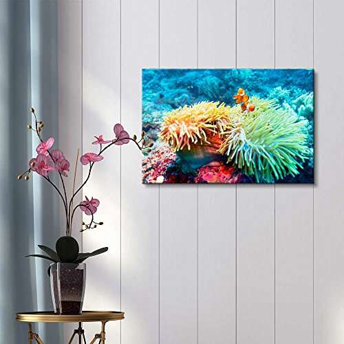Underwater Landscape with Clown Fish Near Tropical Coral Reef Bali Indonesia ing