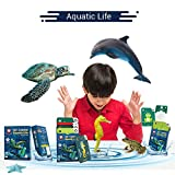 Aquatic Life | Age 3-10 Years | Educational Games for Boys & Girls | Augmented and Virtual Reality based Learning kit | Flash Card Games | Perfect Return Gift for Kids Birthday
