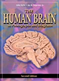 img - for The Human Brain: in Photographs and Diagrams book / textbook / text book