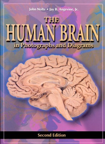 The Human Brain: in Photographs and Diagrams