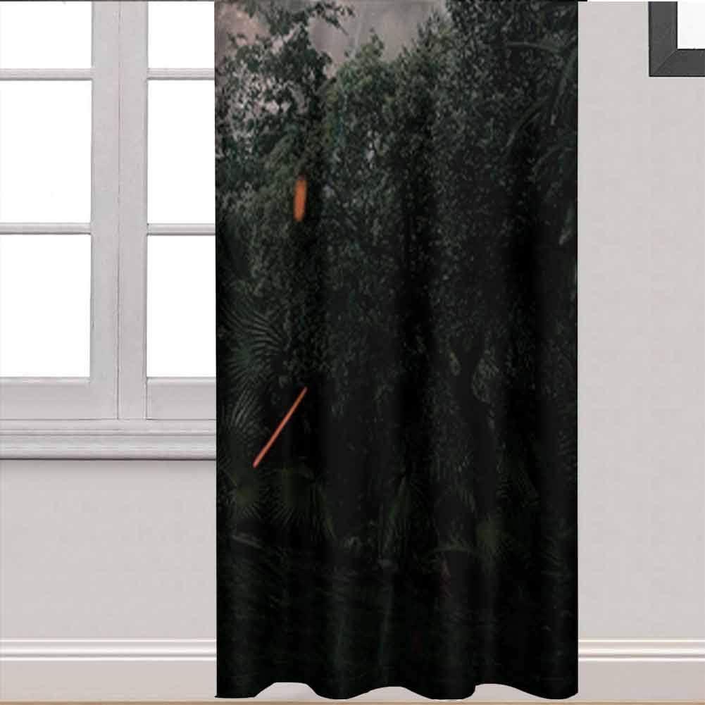 ZhiHdecor Room Darkening Curtains Jurassic World Fallen Kingdom Draperies for Living Room