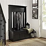 Bowery Hill Entryway Hall Tree in Black