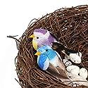 FUNSHOWCASE ジオラマ キット おもちゃ 二つ鳥 鳥の巣 手作り ミニチュア インテリア ドールハウスキット ハンドメイド フィギュア