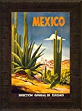 Mexico Cacti 23.5x17.5 Travel Poster Cactus Desert Mexican Tourism City Hispanic Spanish Vacation Beach Pacific Ocean Framed Art Print Wall Décor Picture
