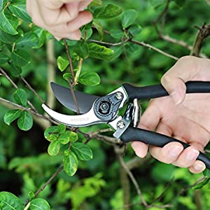 WINSEE Pruning Shears, Professional Sharp Bypass Hand Pruner, Garden Shears, Clippers for Garden with Shock Absorbing Spring