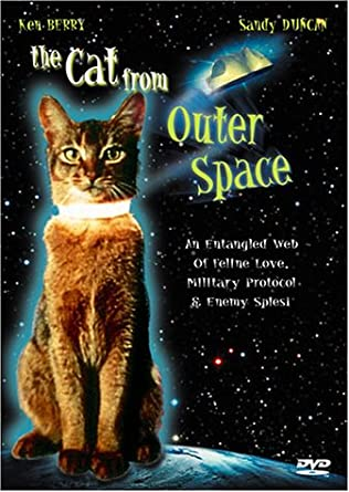 Image result for the cat from outer space