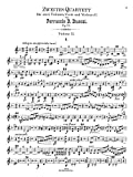 Busoni : Zweites Quartett D minor, Op. 26
