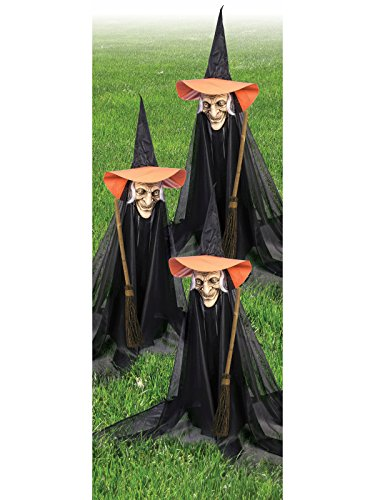 Forum Novelties Group of Spooky Witch Lawn Props -