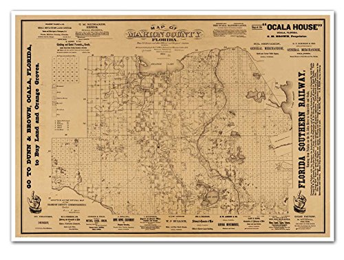 Lake Grove Satin - MAP of Marion County, Florida circa 1883 - Palatka to Gainesville - measures 24