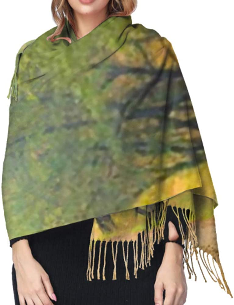 Classic Cashmere Feel Unisex Winter Scarf Dirt Road Mailbox During Fall Foliage Long Large Warm Scarves Wrap Shawl Stole