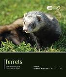 Ferrets (Pet Friendly)