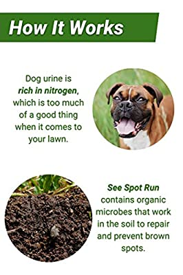 See Spot Run Lawn Protectant - Complete and Safe Natural Lawn Care for Pets. Cures and Prevents Dog Urine Spots