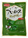 Morikawa Kenkodo Propolis Candy 100g