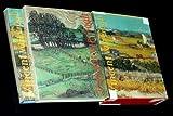 Vincent Van Gogh, Johannes van der Wolk and Rizzoli Staff, 084781288X