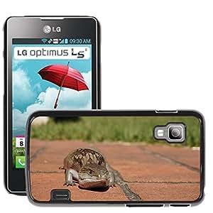 Hot Style Cell Phone PC Hard Case Cover // M00115575 Lizard Skink Blue Tongue Reptile // LG Optimus L5 II Dual E455 / E460