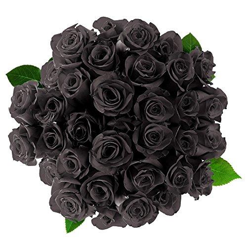 FRESH Black Roses| 25 stems Magnaflor - XXLBlooms| Bunch| 10-12 days vase Life