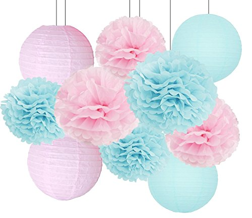 Gender Reveal Party Decorations Baby Shower Decorations Baby Blue Pink Tissue Paper Pom Pom Flowers Paper Lanterns for Birthday/Pink and Blue Decorations/Gender Reveal Decorations]()