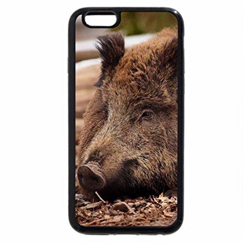 iPhone 6S Plus Case, iPhone 6 Plus Case, Wild Boar