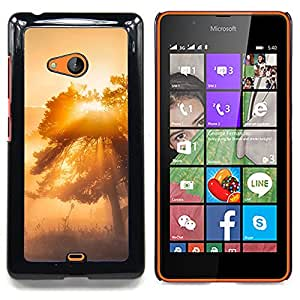 - Misty Tree Glow/ Hard Snap On Cell Phone Case Cover - Cao - For Microsoft Nokia Lumia 540 N540